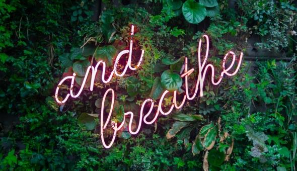 Tips para introducir mindfulness en tu rutina diaria 6
