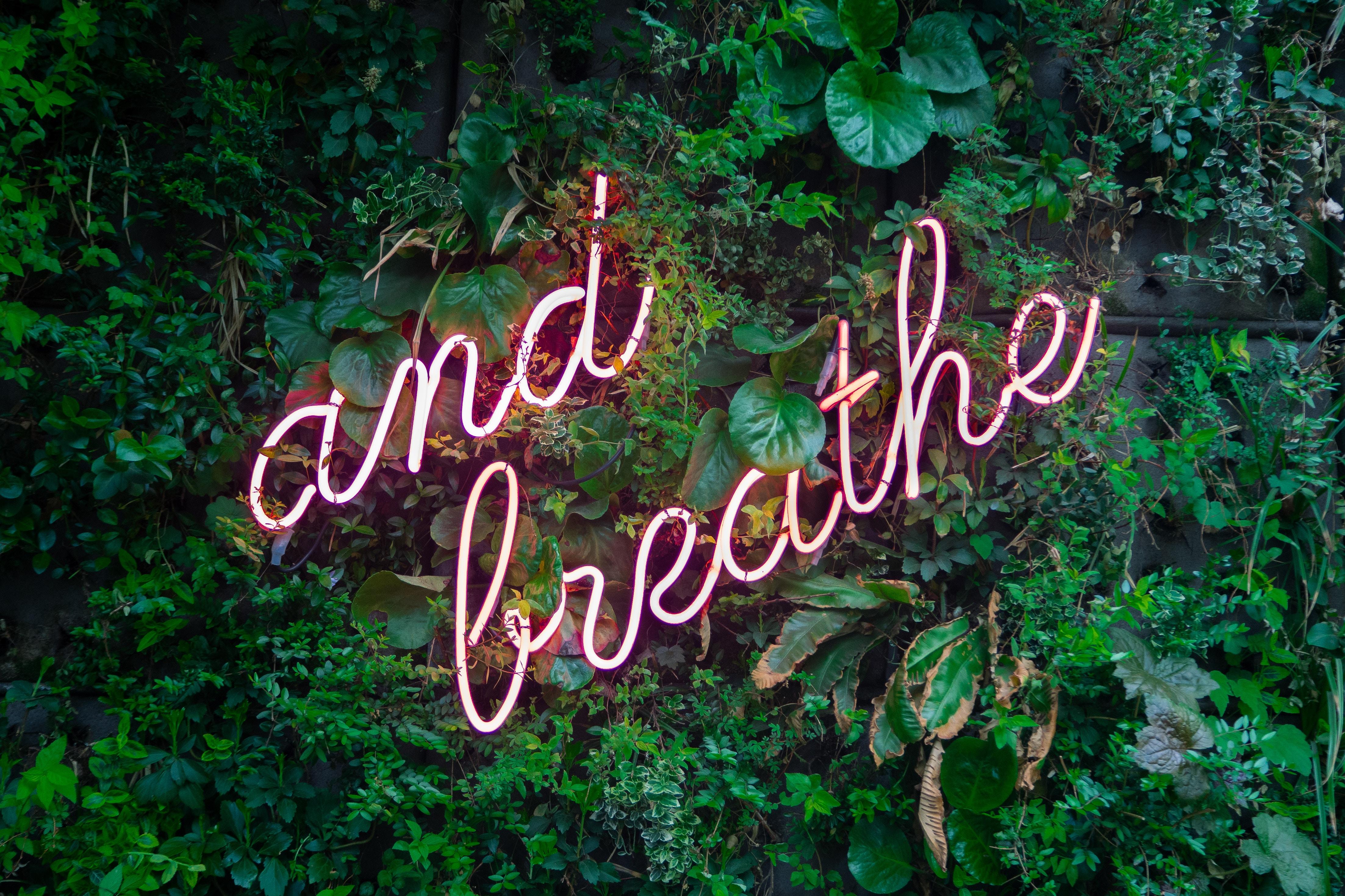 Tips para introducir mindfulness en tu rutina diaria 1